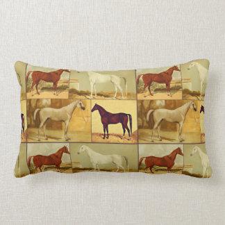 Arabiska hästar för vintage - collage lumbarkudde