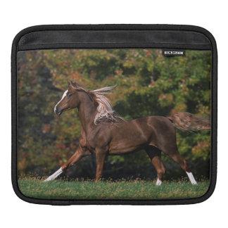Arabiskt hästspring i gräs- fält sleeve för iPads
