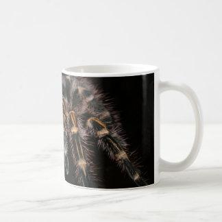 Arachnoid för stor spindel för tarantel hårig kaffemugg