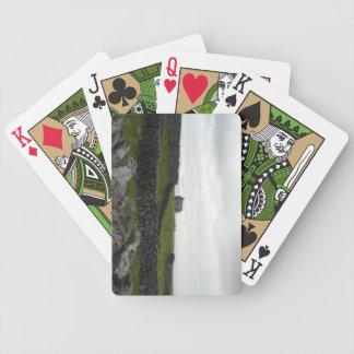 Aran ö som leker kort spelkort