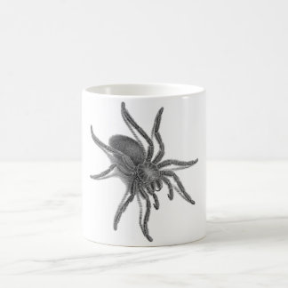 Aranea Avicularia, svart kubansk spindel Kaffemugg
