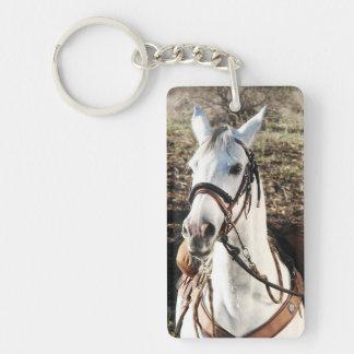 Året av hästen