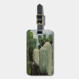 Arizona kaktus bagagebricka