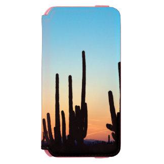 Arizona! Saguarosolnedgång