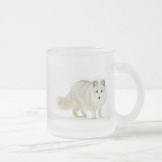 Arktisk räv för vit frostad glasmugg
