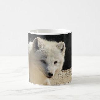 Arktisk räv kaffemugg