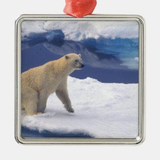 Arktisk Svalbard, valross som är vänlig Julgransprydnad Metall