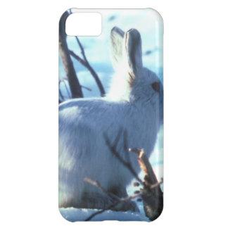 Arktiska Hare i snö iPhone 5C Fodral
