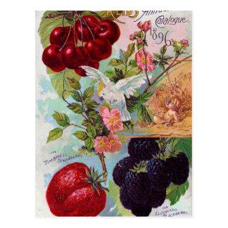 Årlig fruktkatalog 1896 vykort