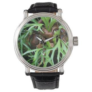 Armbandsur för Staghorn Fern