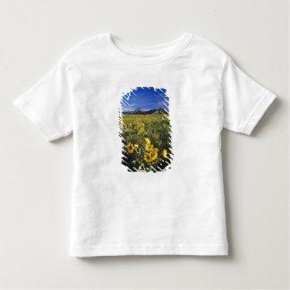 Arrowleaf balsomrootvildblommar i Waterton 2 Tee Shirt