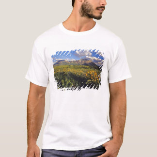 Arrowleaf balsomrootvildblommar i Waterton T-shirt