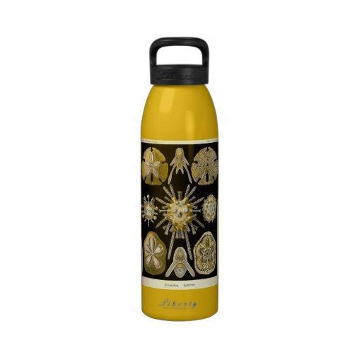 Artforms av Nataure #30 Återanvändningsbar Vattenflaskor
