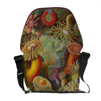 Artforms av naturen #49 kurir väska