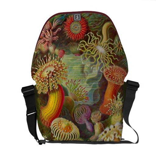 Artforms av naturen #49 messenger bag