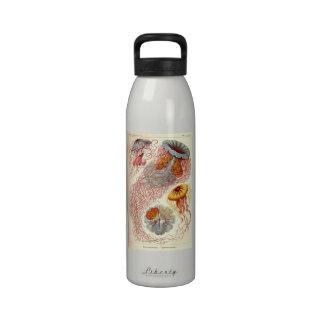 Artforms av naturen 8 återanvändningsbar vattenflaskor
