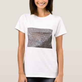 Asfullt Tee Shirts
