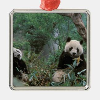 Asien china, Chengdu. Jätte- Pandafristad - 2 Julgransprydnad Metall