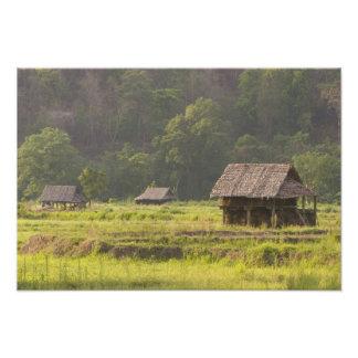 Asien Thailand, Mae Hong Son, ris förlägga i barac Fototryck