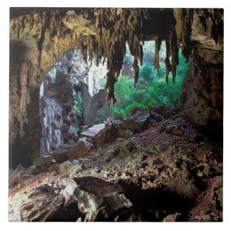 Asien Thailand, Phangnga fjärd NP Kakelplatta