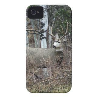 Asp- bock iPhone 4 Case-Mate skydd