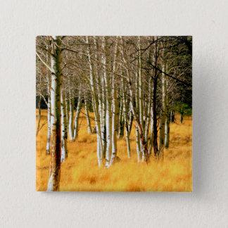 asp- skogen knäppas standard kanpp fyrkantig 5.1 cm