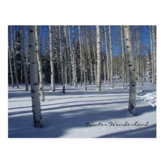 Aspen i vintervykort vykort