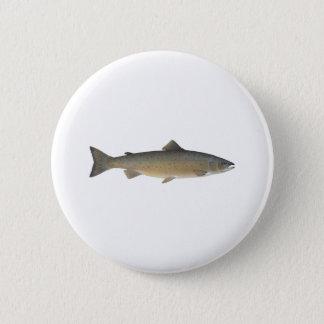 Atlantisk lax standard knapp rund 5.7 cm