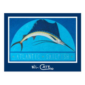 Atlantiska Sailfishvykort Vykort
