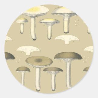 Ätliga svampar i New York Runt Klistermärke