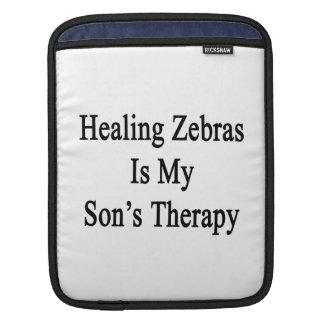 Att läka zebror är min sons terapi sleeves för iPads