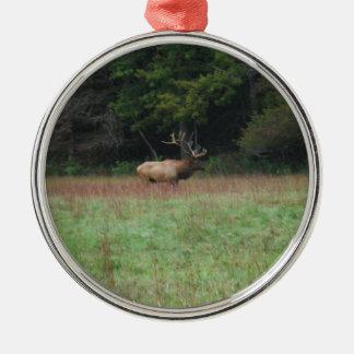 Åtta 8 pekar tjurälg i höst rund silverfärgad julgransprydnad