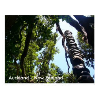 Auckland vykort