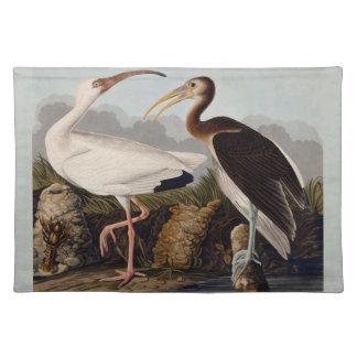 Audubon vit Ibis Bordstablett