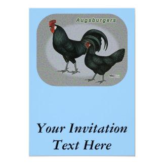 Augsburger fågel 12,7 x 17,8 cm inbjudningskort