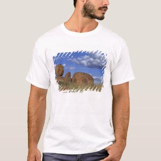 Australien djävulen marmorar. Sfärisk sandsten T-shirt