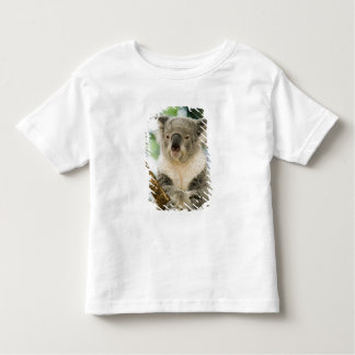 Australien Queensland, Brisbane, Figträd Tshirts