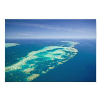 Australien Queensland, norr kusten, rösen 2 Konstfoto