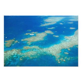 Australien Queensland, norr kusten, rösen 2 Foton