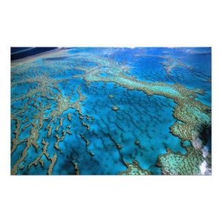 Australien - Queensland - underbar barriärReef. Fotografi