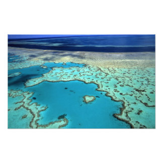 Australien - Queensland - underbar barriärrev. 2 Fototryck