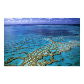 Australien - Queensland - underbar barriärrev. 6 Fototryck