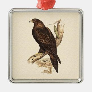 Australiensisk kil Tailed örn. Enorm fågel av Julgransprydnad Metall