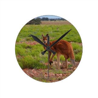 Australiensisk röd känguru rund klocka