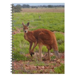 Australiensisk röd känguruanteckningsbok anteckningsbok
