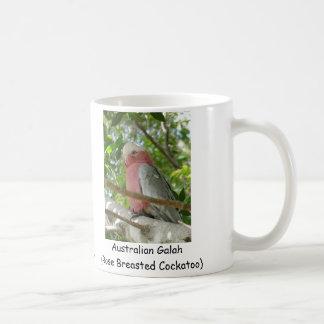 Australiensiska Galah (steg den gick mot Kaffemugg