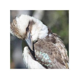 Australiensiska Kookaburra Canvastryck