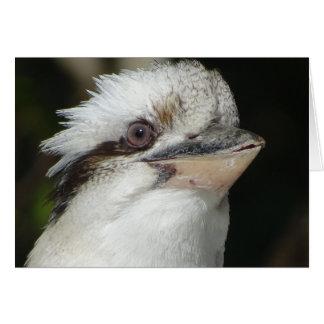 Australiensiska Kookaburra Hälsningskort