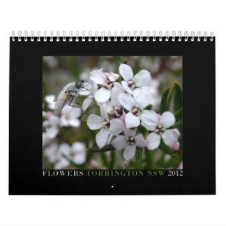Australiensiska vildblommar kalender