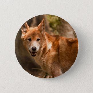 Australiensiskt Dingoemblem Standard Knapp Rund 5.7 Cm